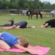 Yoga & Horses