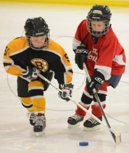 Aylmer Tyke 2 hockey