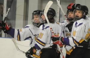 webeessboyshockey1