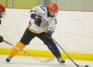 webeessgirlshockey1