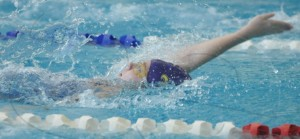 webeessswim