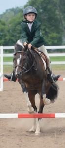 Horse show2